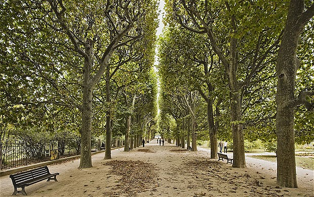 Luxembourg gardens frazier 39 s france for Jardin plantes paris