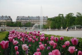 Image result for tuileries garden